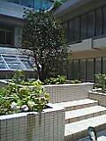 沖縄産業支援センター中庭