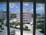 マンションカオスからの風景